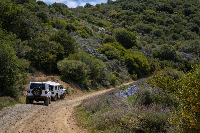 Jeep Wranglers on the dirt roads leading up to Santiago Peak (Saddleback Mountains)